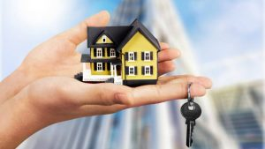Qualities to Look For When Searching For a Realtor
